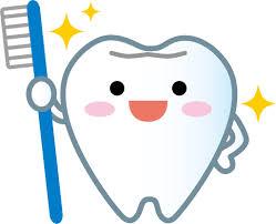歯 イラスト2.jpg
